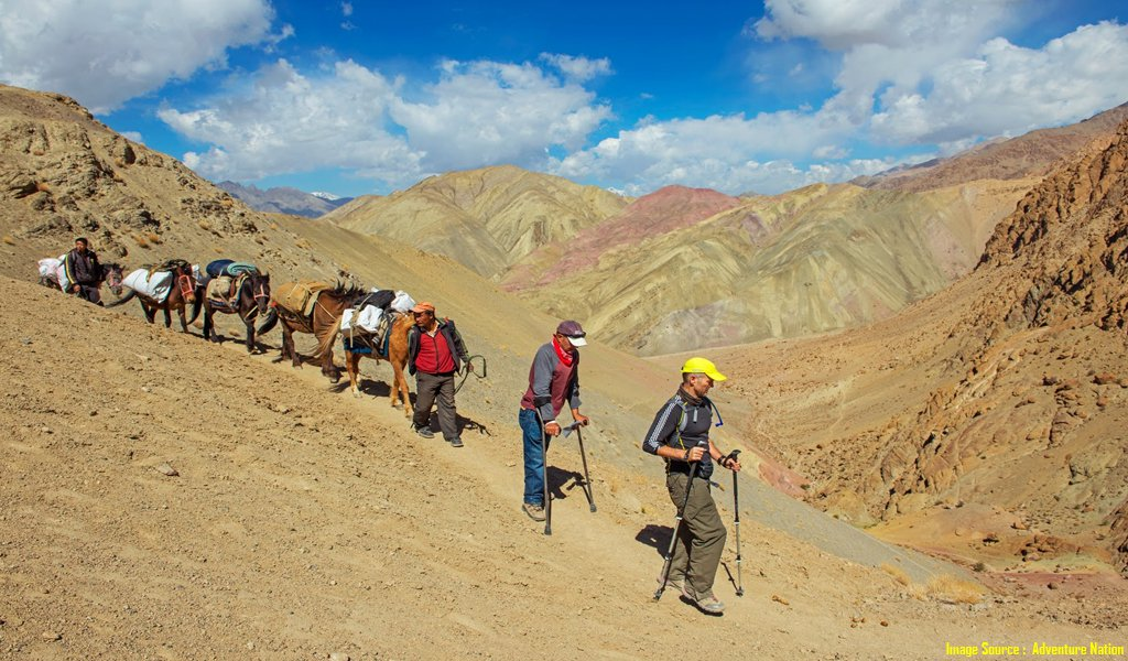 trekking in ladakh india