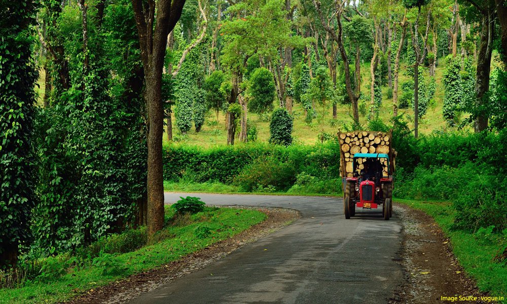 honeymoon places in south india : Coorg
