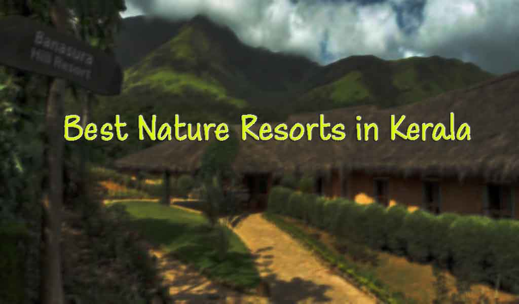 Best Nature Resorts in Kerala |unique resorts in kerala