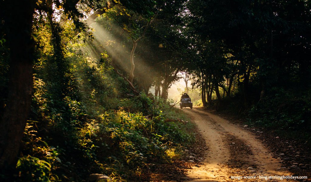 9 Best Places To Visit In Summer In India
