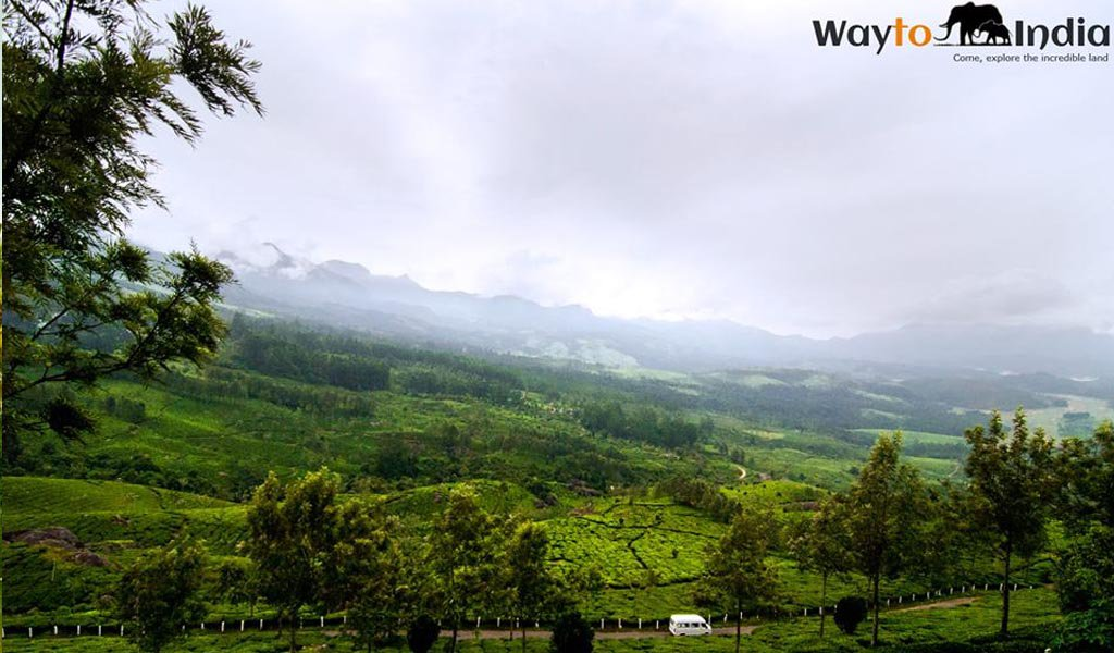 Best Tourist Places In India : Kerala