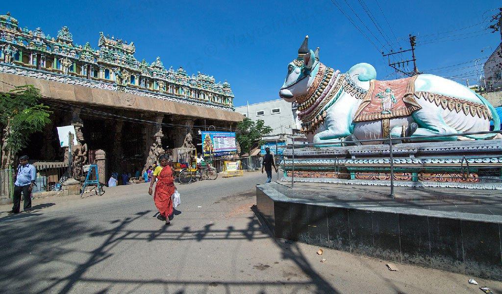 Rameshwaram Tour : Mandi Statue Meenakshi Temple