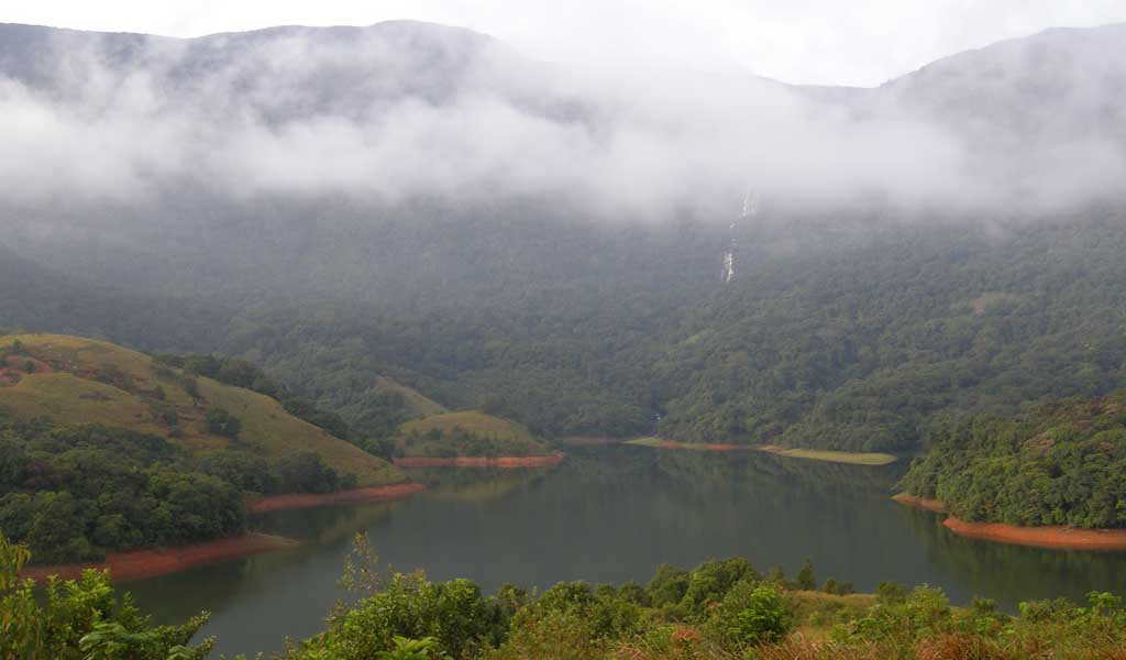 10 Thrilling Places Near Bangalore : Nilgiri Biosphere Reserve