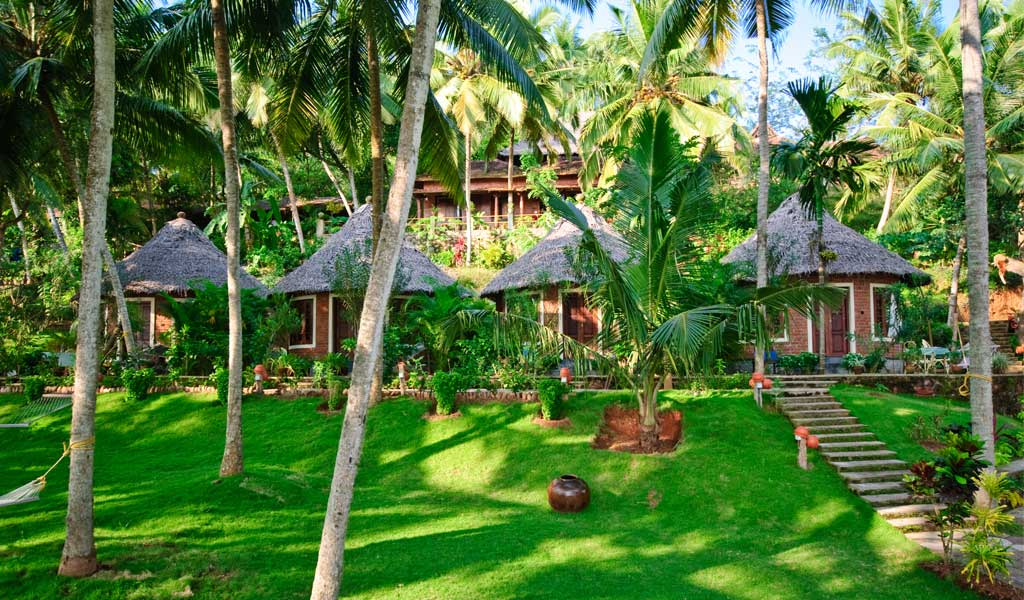 5 Best Ayurvedic Retreats In India