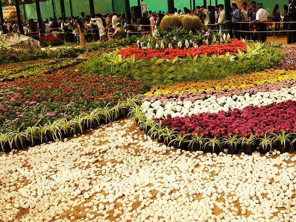The Flower Show in Ooty