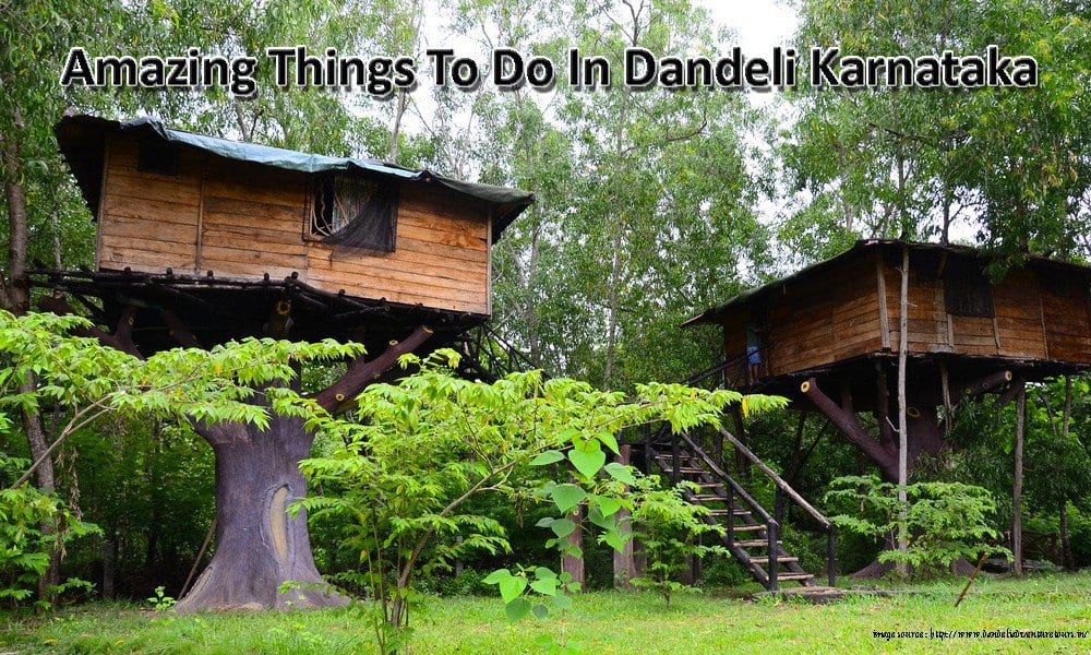 Amazing Things To Do In Dandeli Karnataka