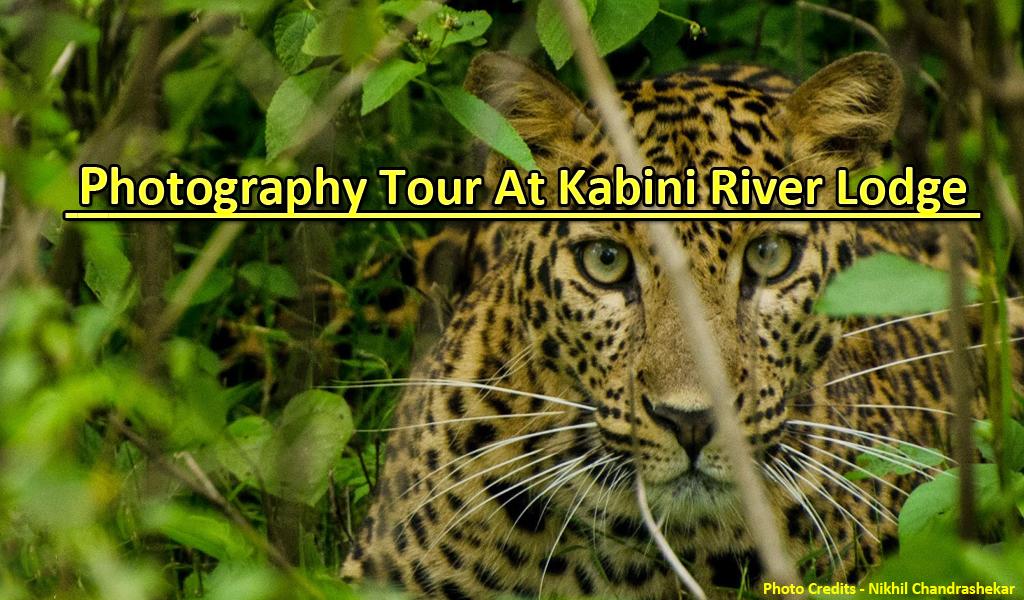 Photography Tour At Kabini River Lodge Waytoindia Com
