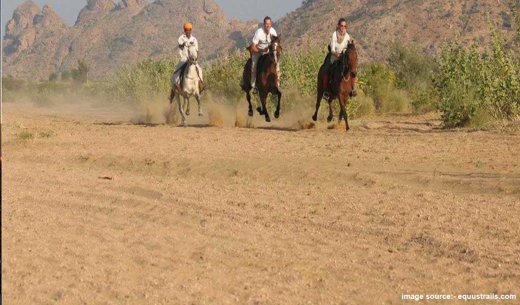 Plces to relax in india : Horse safari
