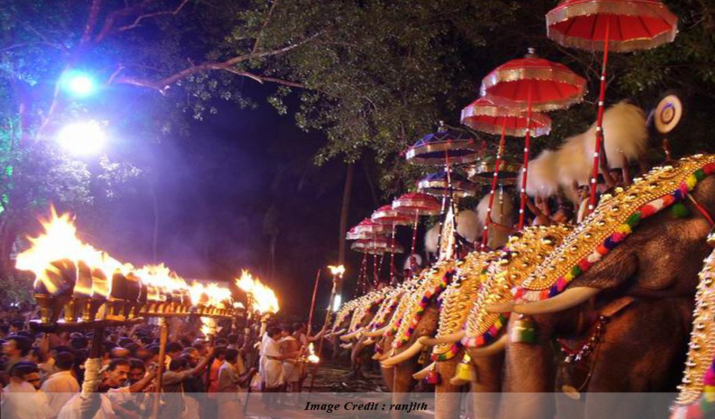 Elephant Festival Thissur : Top Festivals of India
