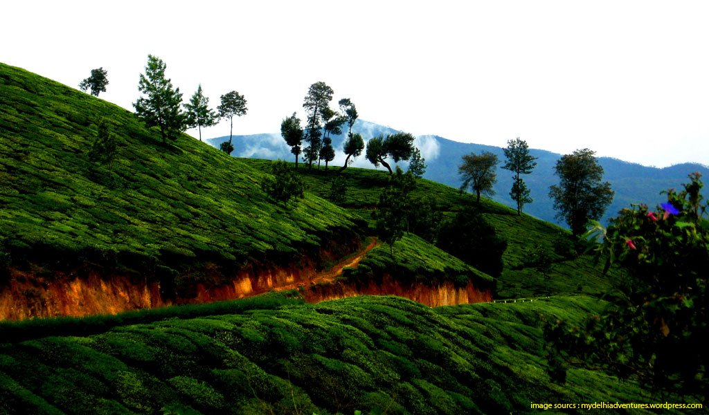 7 Best Hill Stations For Honeymoon In India Waytoindia Com