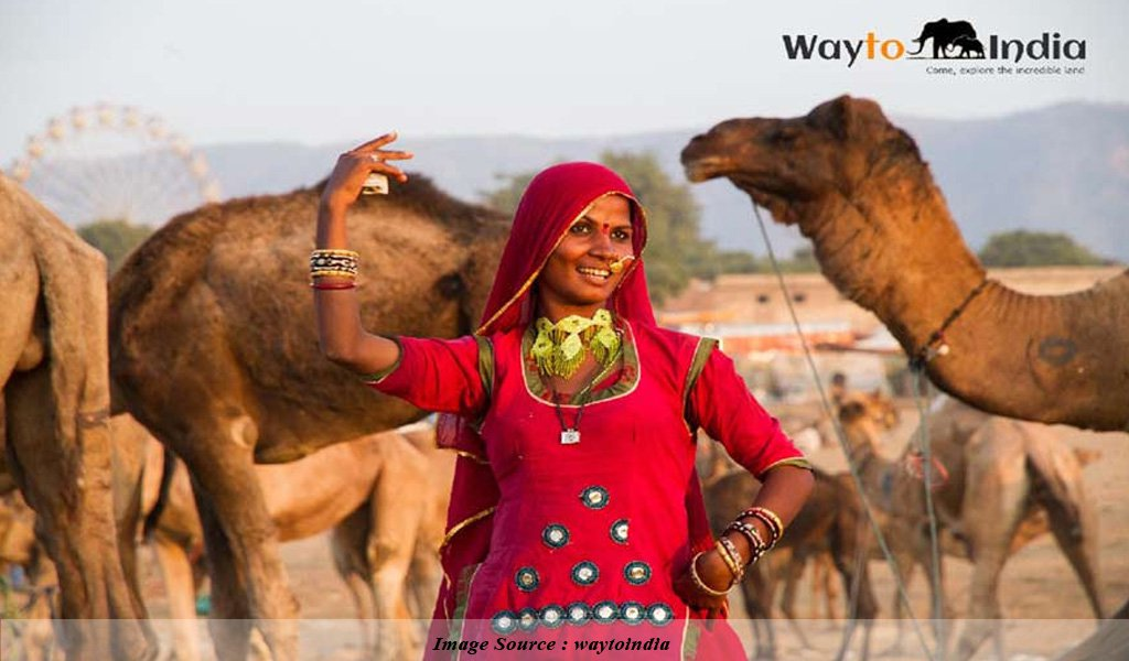 Pushkar : Festivals of India
